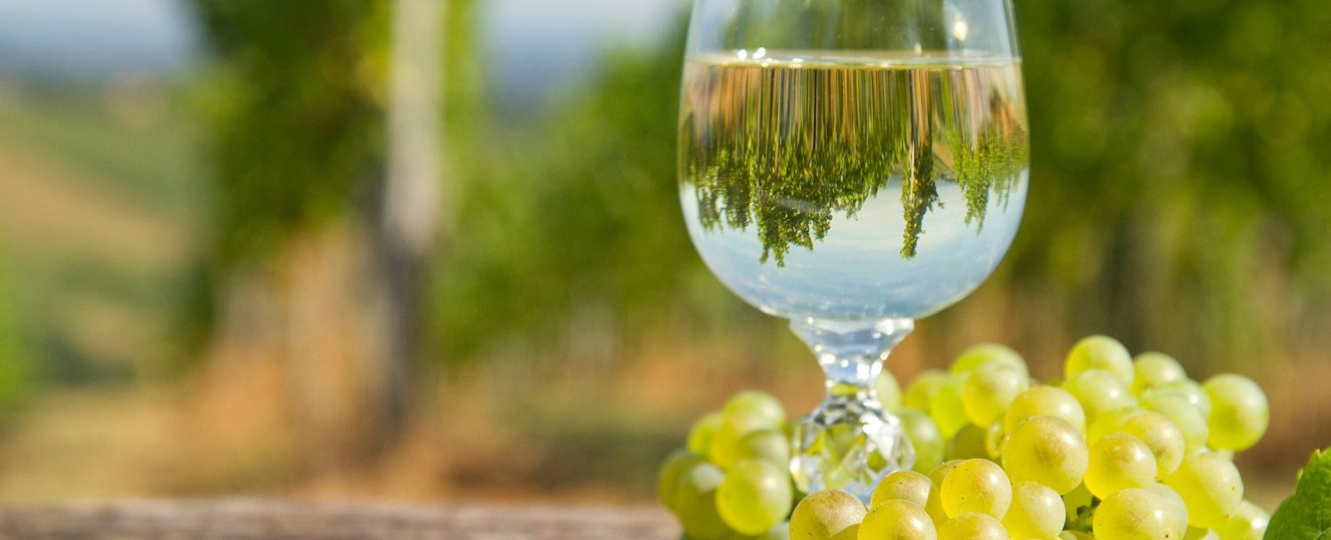 3 Reasons Why You Need To Visit Mountain View Vineyard The French Manor Inn And Spa