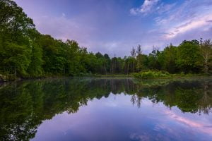 Reflections at a pond at the Delaware Water Gap in PA
