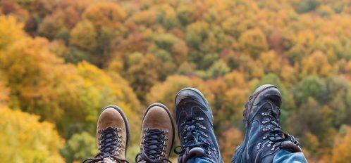 Don't miss the Big Pocono State Park fall foliage!