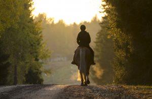 horseback riding in the Poconos
