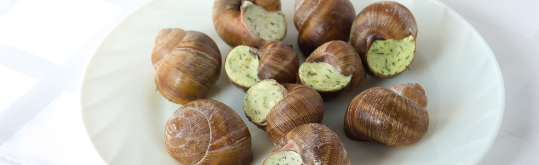 snail round plate white napkin